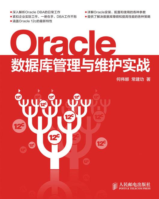 Oracle数据库管理与维护实战 PDF格式高清电子书免费下载